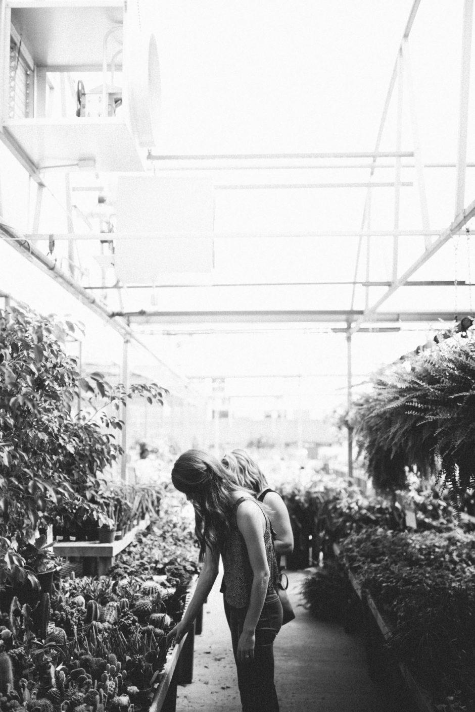 Greenhouse-13
