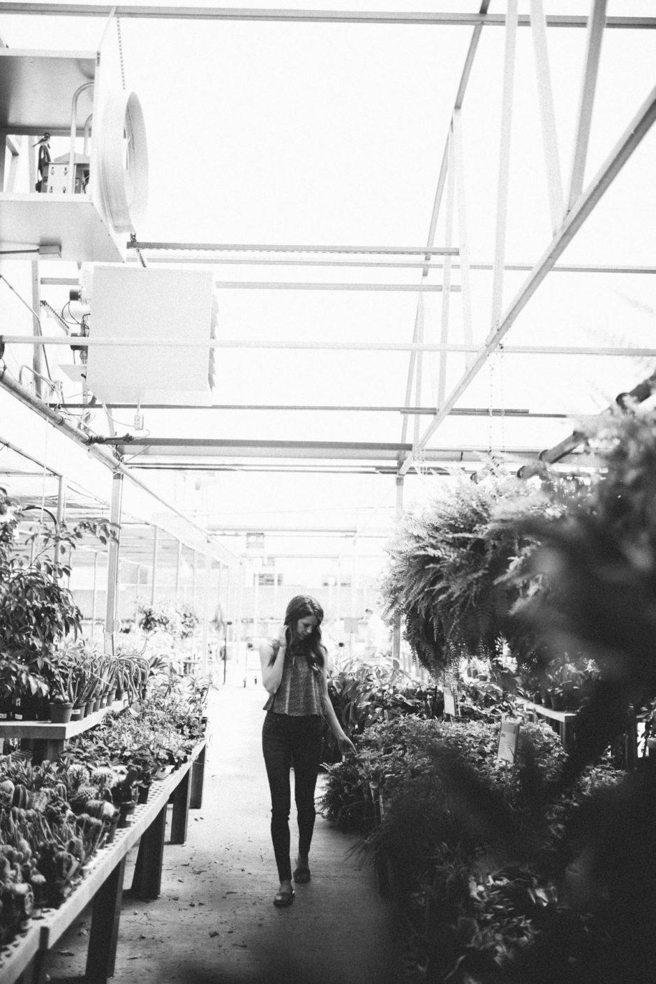 Greenhouse-24